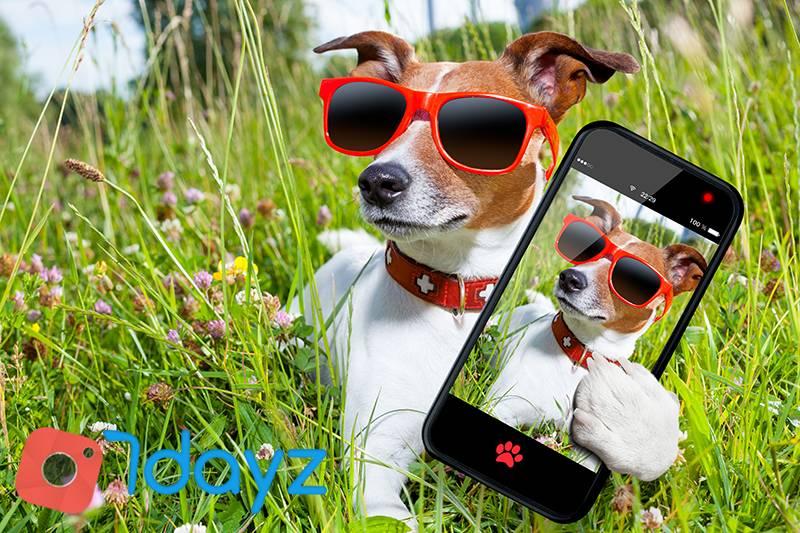 7dayz-dog-selfie